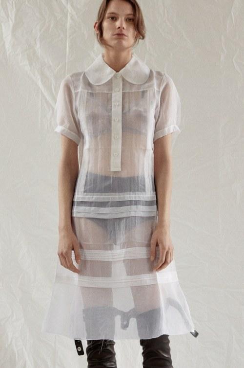 celine sheer dress