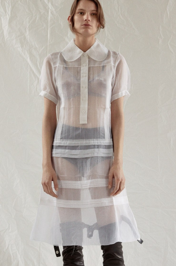 celine sheer dress
